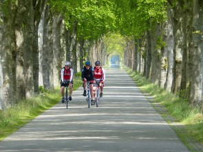 Sportive Biking arrangement 'Acht landschappen'