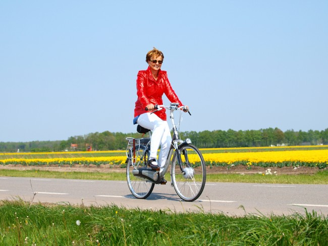 holland tulip tour e bike fietsarrangement noordoostpolder. Black Bedroom Furniture Sets. Home Design Ideas