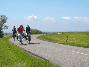 Viva la Frisia: 4-day Historical City Tour by e-bike including services
